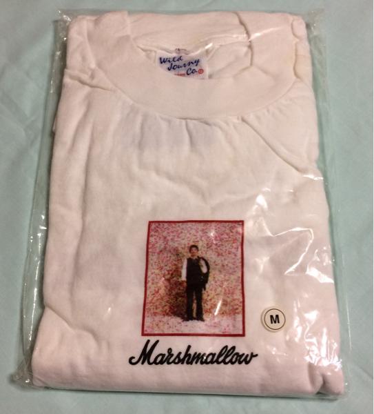 奥田民生 ツアーグッズ Tシャツ M ユニコーンUNICORNABEDONrcm ライブグッズの画像