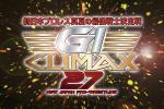 8/11 (祝・金)新日本プロレス G1 CLIMAX 2階 指定席 1-3枚 新日 新日本 両国 G1クライマックス 棚橋 内藤 飯伏 オカダ オメガ