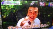 美品 TOSHIBA REGZA 液晶テレビ 43型 2016年製 43G20X