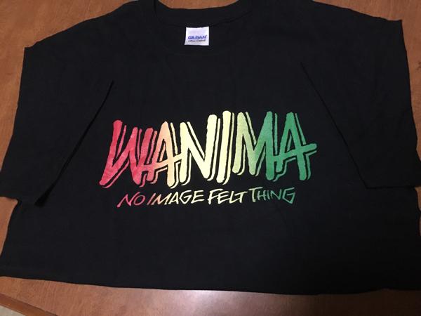 即決 美品 WANIMA ロゴTシャツ ラスタ 黒 Mサイズ PIZZA OF DEATH ピザロゴ ブラック ワニマ ライブグッズの画像