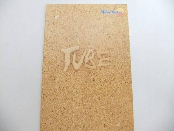 パンフレット TUBE 14 Sunflowers 1999年LIVE/ A492