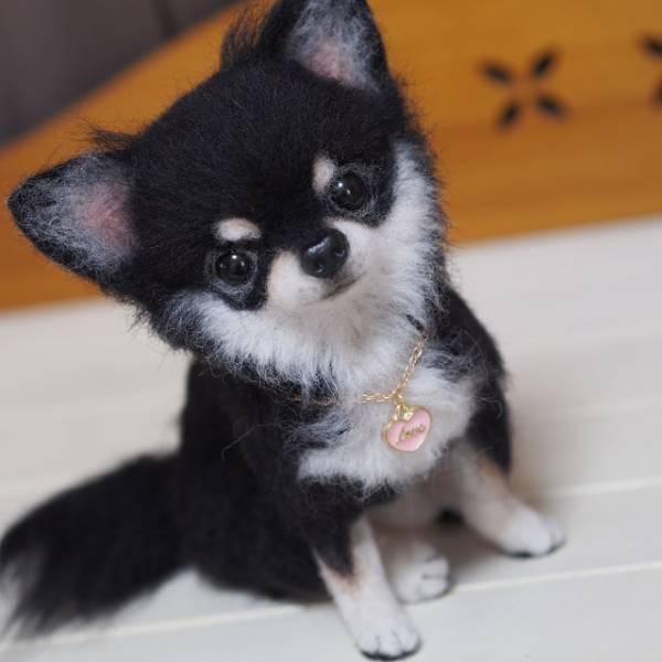 羊毛フェルト 犬 チワワ ブラックタン ハンドメイド