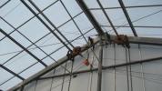 屋根型鉄骨角鋼ハウス 中古