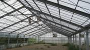 専業農家の方に 屋根型鉄骨H綱ハウス 中古