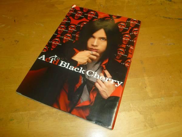 アシッドブラックチェリー Acid Black Cherry 2007 写真集 yasu (ジャンヌダルク Janne Da Arc)