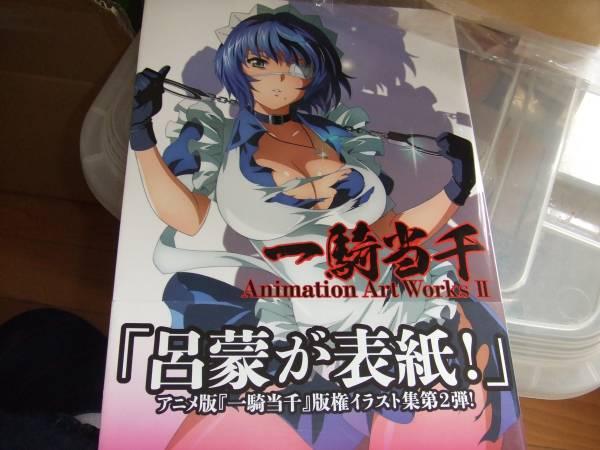 一騎当千 Animation Art Works Ⅱ コミックガム編集部 グッズの画像