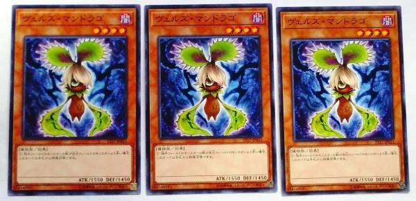 遊戯王 ヴェルズ・マンドラゴ 3枚  日本版 ST17 複数可_画像1