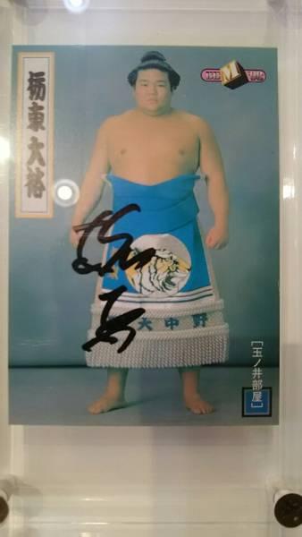 栃東 直筆サインカード 限定30枚 BBM 1998東・大相撲カード グッズの画像