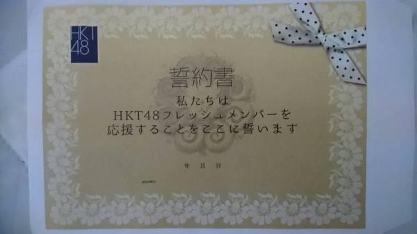 (限定チケットホルダー付き)HKT48 フレッシュメンバーコンサート(高知・鳥取) 誓約書 ライブグッズの画像