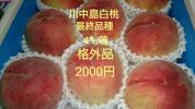 最終品種、川中島白桃、格外品2000円