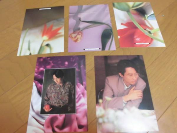 ◆崎谷健次郎◆in My Rainy Garden◆ポストカードセット◆