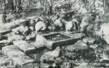 【絵葉書I】(井の頭恩賜公園)お茶の水 東京