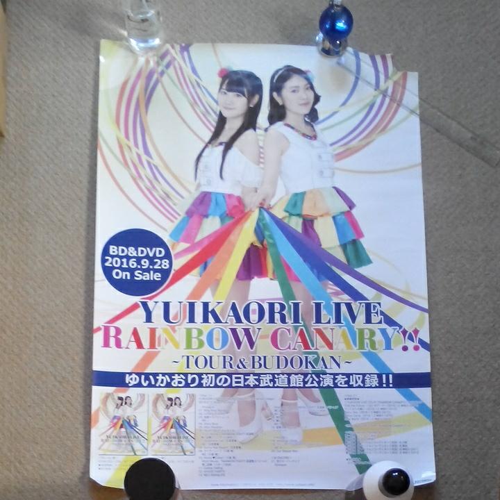 ゆいかおり/YUIKAORI LIVE RAINBOW CANARY !!*宣伝告知ポスター非売品*中古品ジャンク(破れ.セロテープあり)