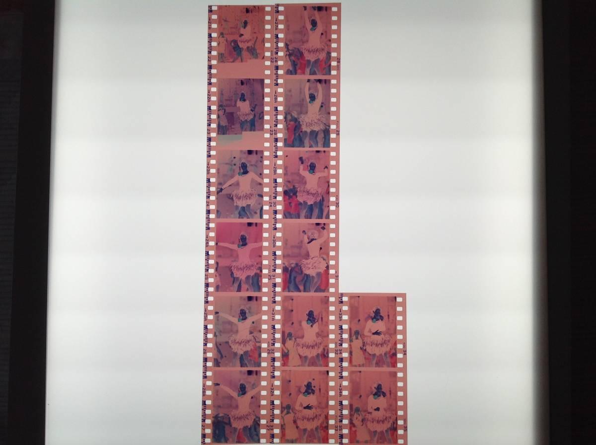 荻野目洋子ネガフィルム14カット1555