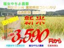 送料無料 29年産新米 高知県産コシヒカリ 遠赤乾燥 白米10kg