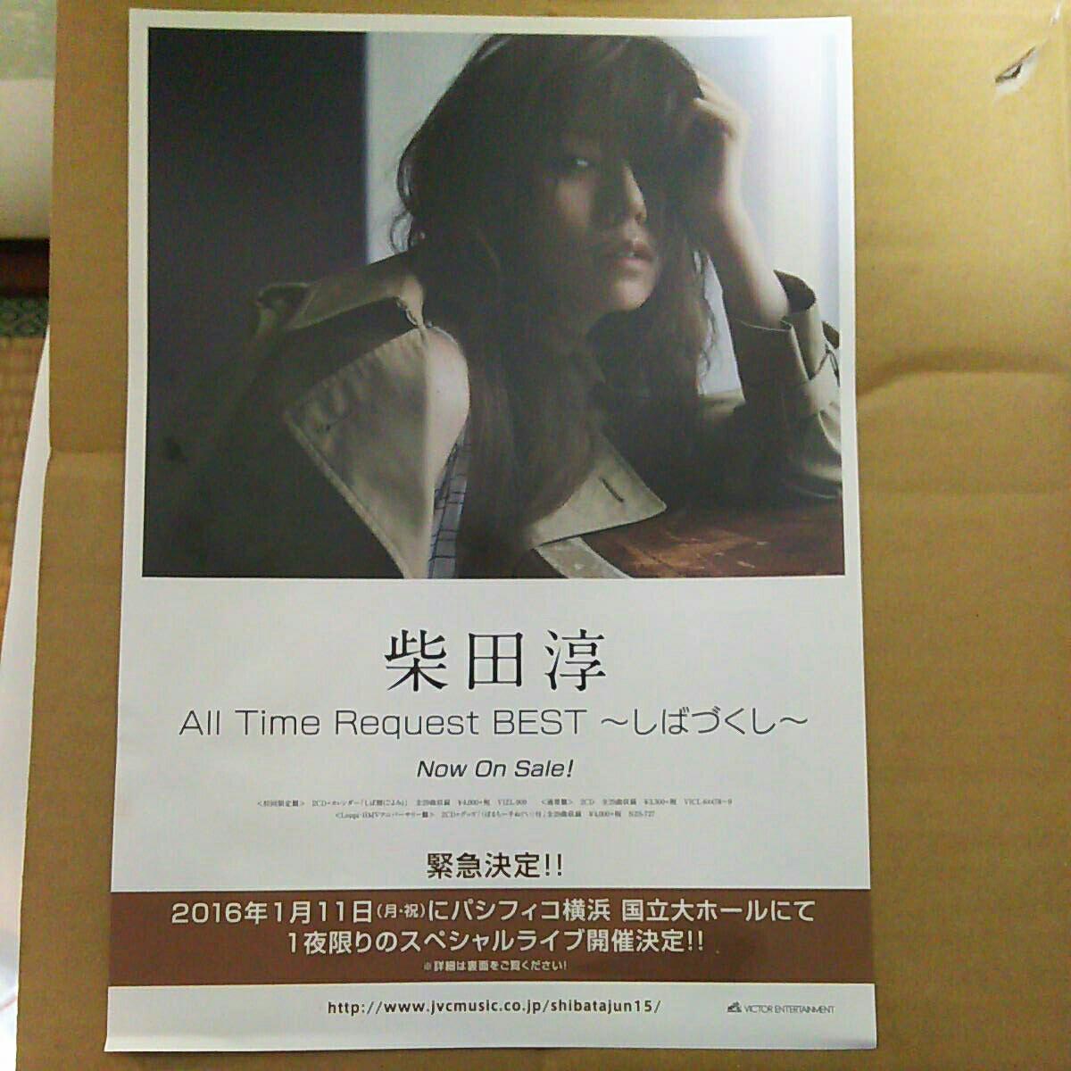 柴田淳アルバム発売告知チラシ2枚組