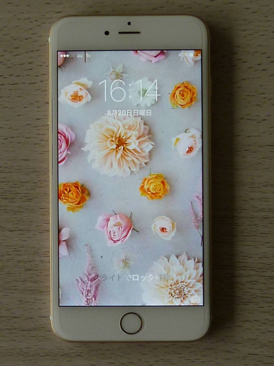 中古美品 au iPhone6Plus ゴールド 16GB 新品ケース等おまけ付 送料無料