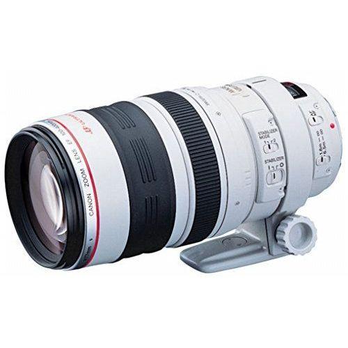 【中古1年保証】【美品】Canon EF 100-400mm F4.5-5.6L IS USM