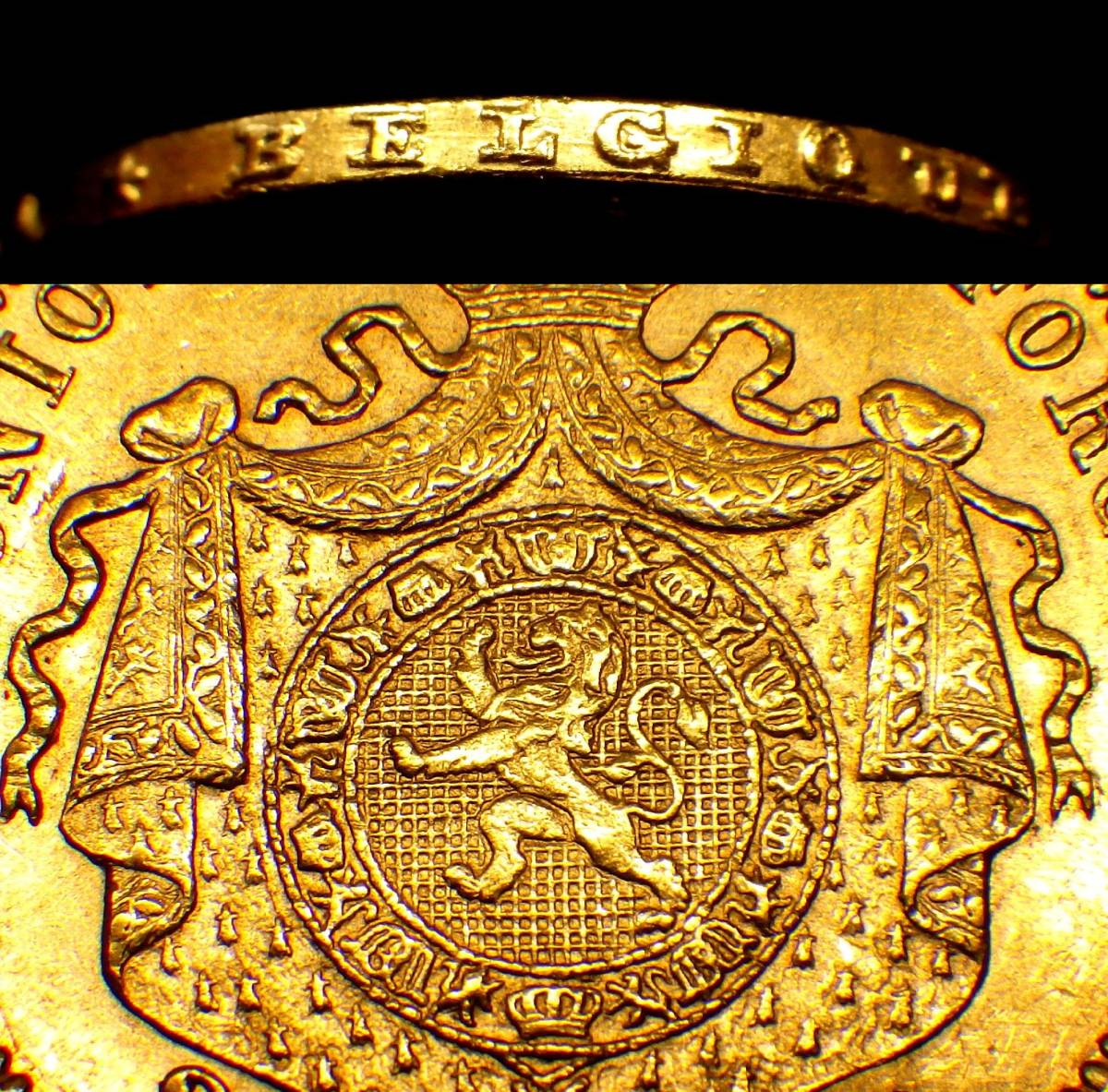 1877年 ベルギー 20フラン金貨 レオポルト2世_画像3