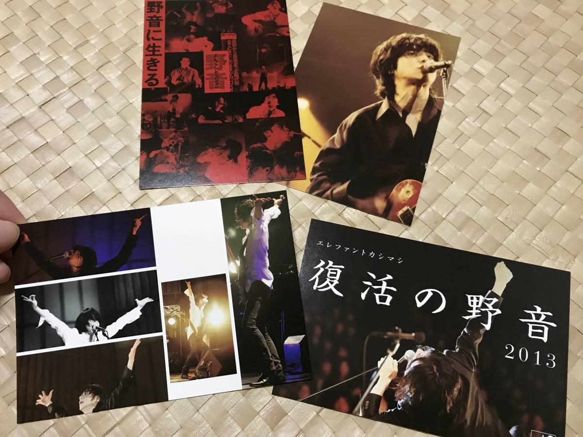 ★送料込み エレファントカシマシ 2013年復活の野音 ポストカード8枚セット★ ライブグッズの画像