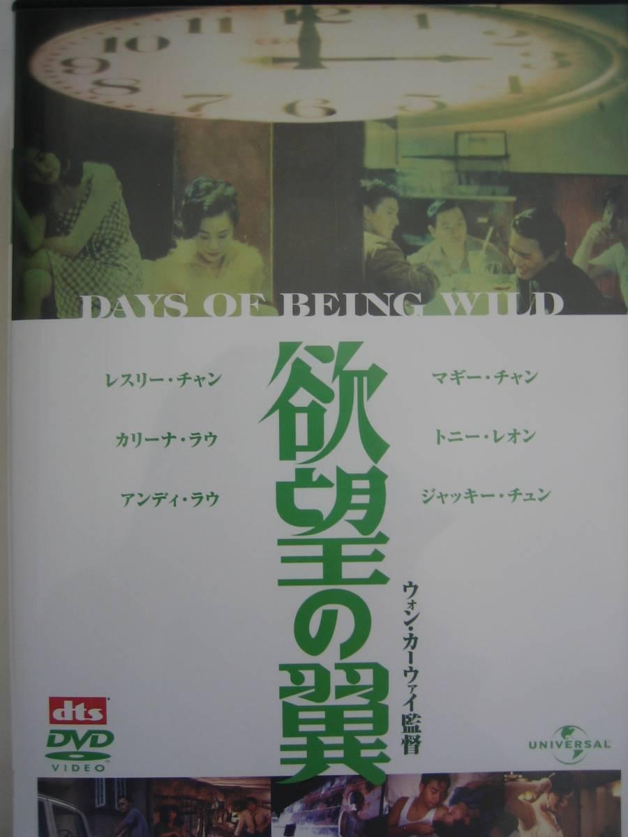 DVD レスリーチャン 欲望の翼 ウォン・カーウァイ監督_画像1
