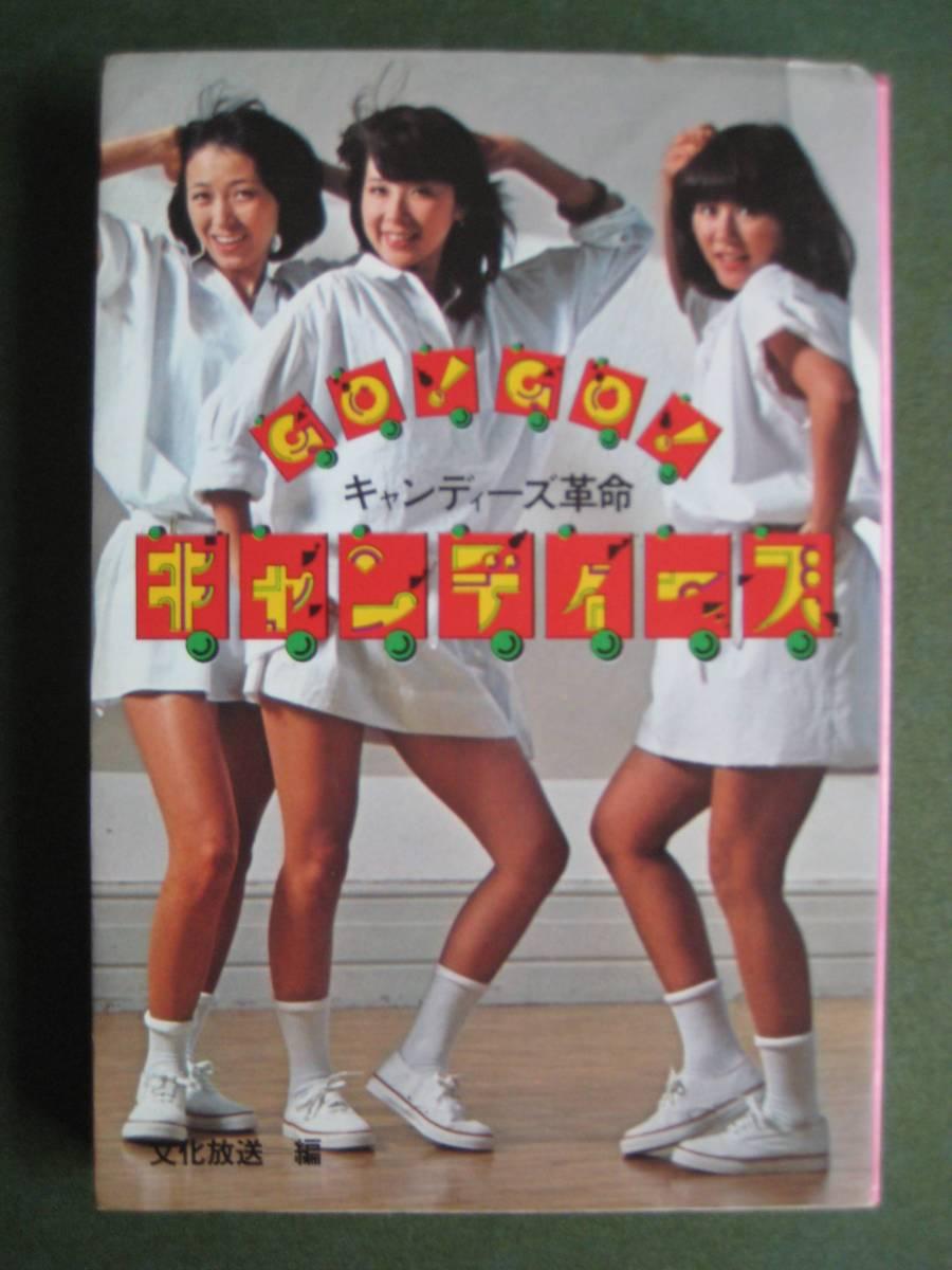 キャンディーズ革命 「GO!GO!キャンディーズ」 ライブグッズの画像