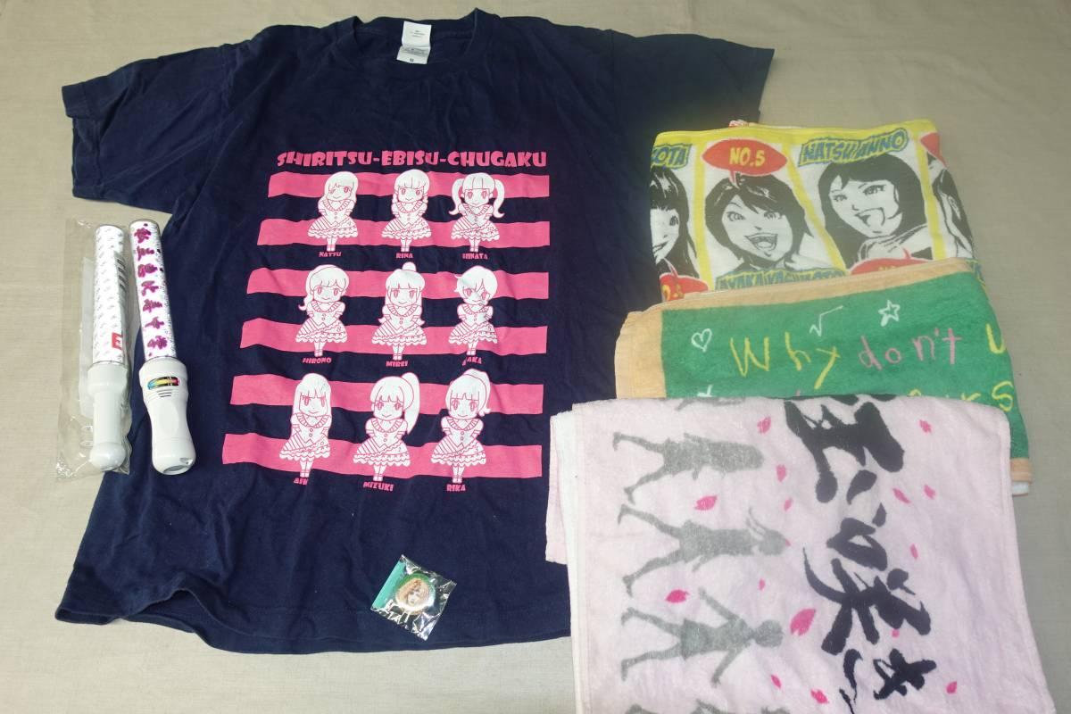 1974私立恵比寿中学セット Tシャツタオル雑誌ペンライトギガライト他 ライブグッズの画像