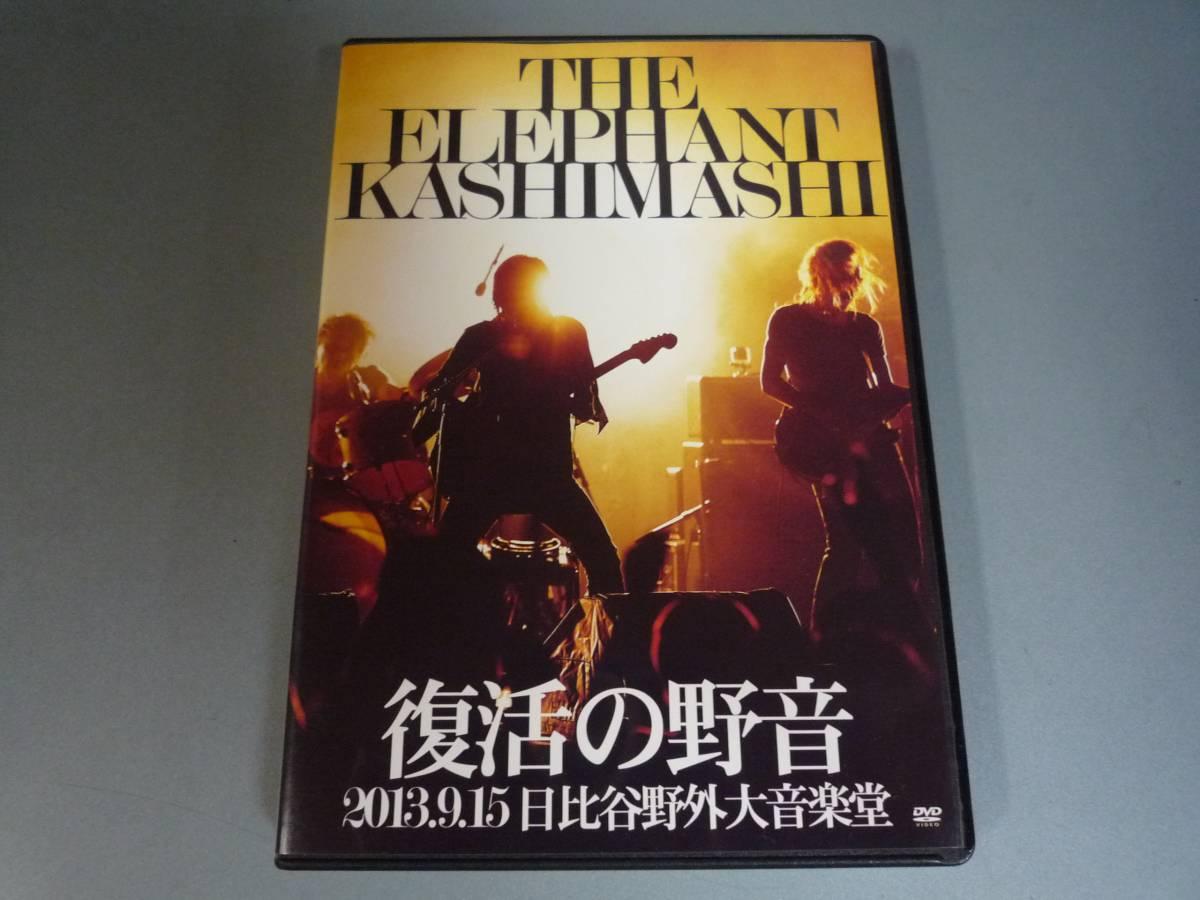 エレファントカシマシ 復活の野音 2013 日比谷外大音楽堂 ライブグッズの画像