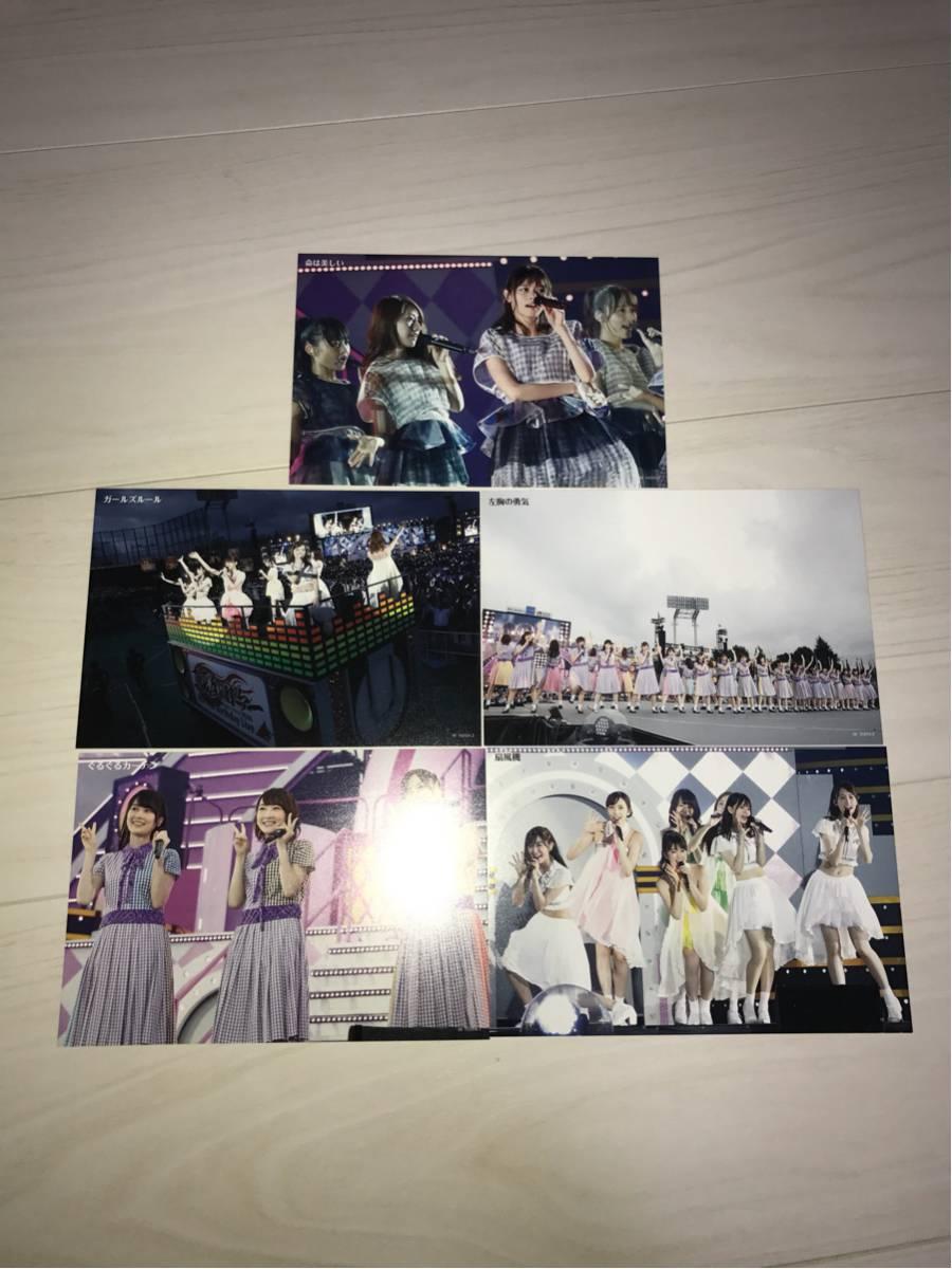 乃木坂46 4th YEAR BIRTHDAY LIVE 2016.8.28-30 JINGU STADIUM 特典 ポストカード