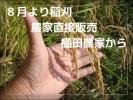 〇お米の王国から、28年こだわり米。山間農家の20㎏、無洗米可