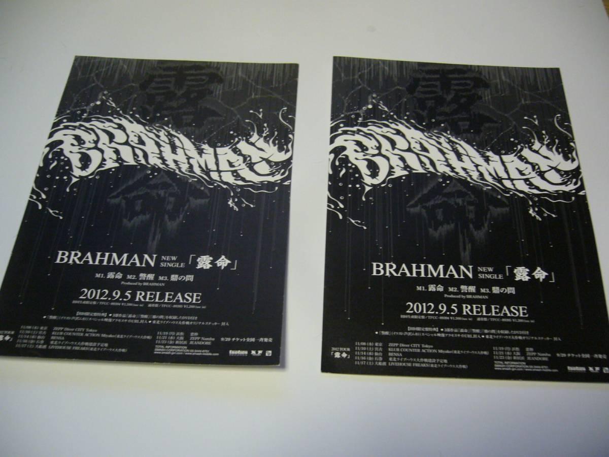2枚セット 小 チラシ BRAHMAN (ブラフマン)