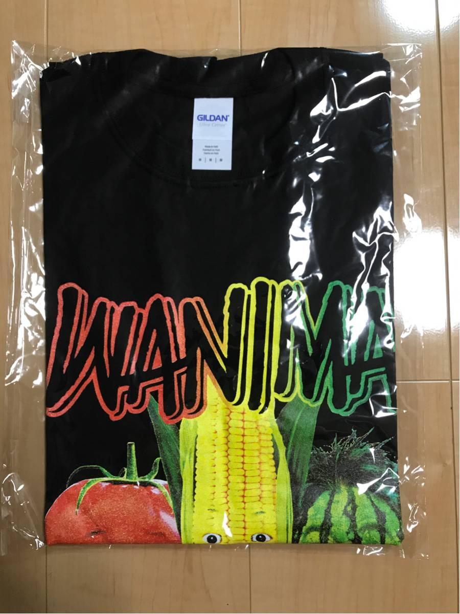 WANIMA 夏フェス ライブ会場限定グッズ 野菜顔 Tシャツ 黒 M 新品未使用 野菜