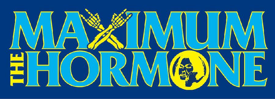 マキシマムザホルモン ライブ会場限定グッズ ホルモンの デカくていい生地のタオル 青