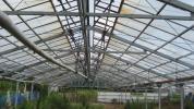 屋根型角綱ハウス  中古