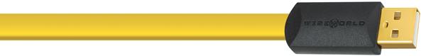 WIREWORLD Chroma CSM/0.5m [A-mini Bタイプ] 4571408322910