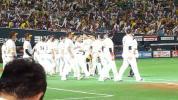 8月24日 (木) ソフトバンク対西武 コカコーラシートS 一塁側 連番2枚