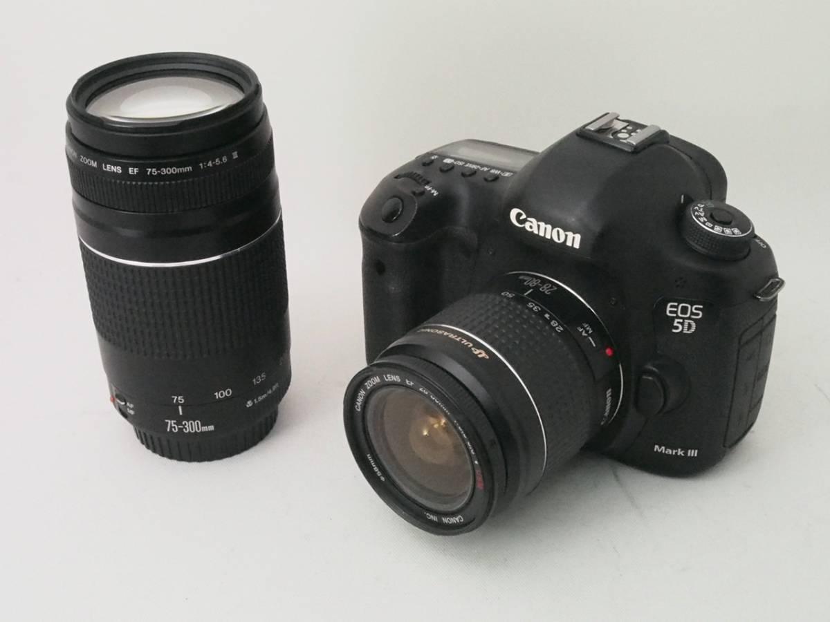 32GのCFカード付き! Canon キヤノン EOS 5D Mark III Wレンズセット  #953