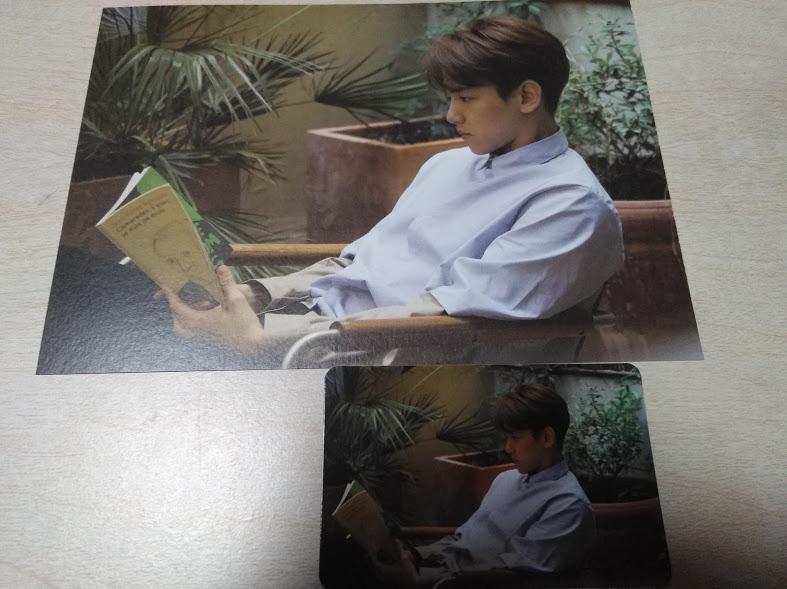 EXO ベッキョン/ベクヒョン,Beakhyun ★公式フォトカード&トレカ セット ライブグッズの画像
