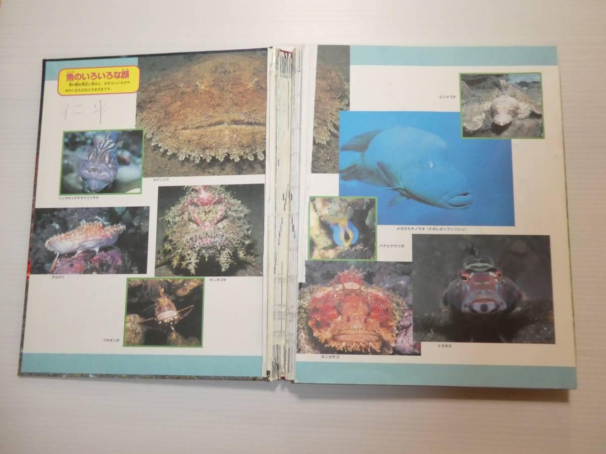 学研の図鑑 宇宙・鳥・水の生き物等 6冊_画像3