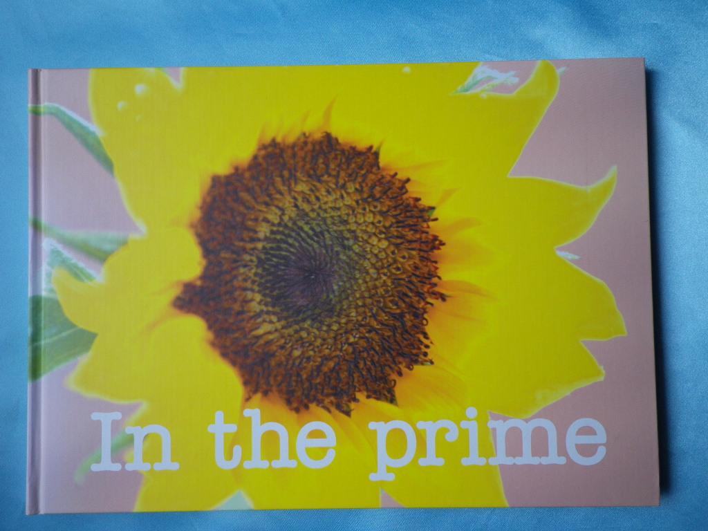 あみん In the prime ~ひまわり~ 25周年 パンフ 岡村孝子 2007