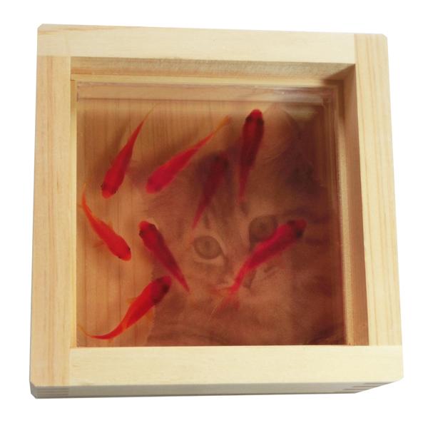 金魚と猫のアート 「咲/ねこ?#24037;长坤銫轆?#32020;日本製 【プレゼント付き】 ラッピング無料 ネコ 猫 キャット