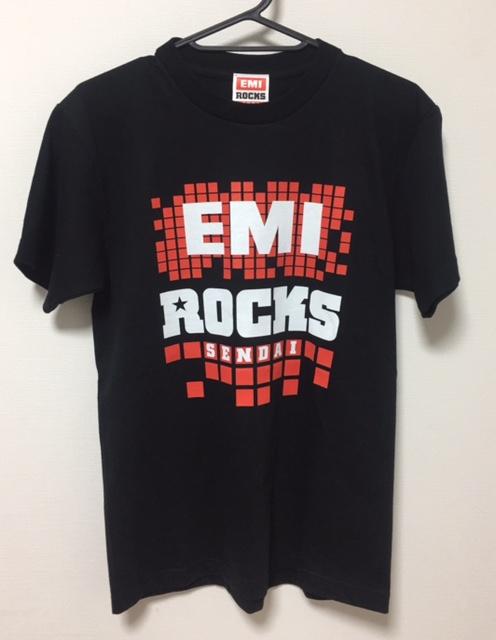 激レア 美品 EMI ROCKS SENDAI Tシャツ サイズS ACIDMAN The SALOVERS the telephones 布袋寅泰 The Mirraz 雅-MIYAVI- 吉井和哉