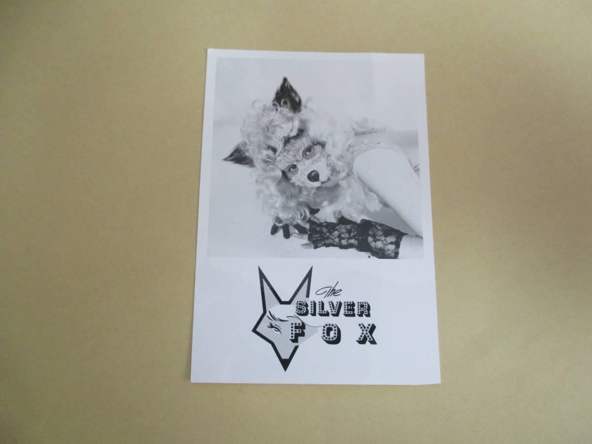 宣伝用写真 シルバーフォックス  THE SILVER FOX 歌手