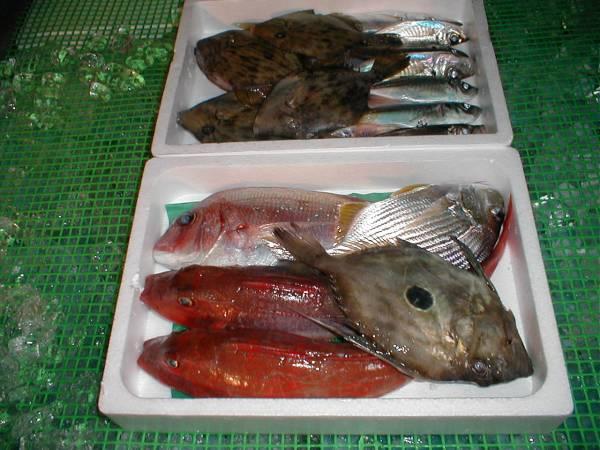 【送料込み】 鮮魚お試しセット 3~4k 【激安】 _画像1