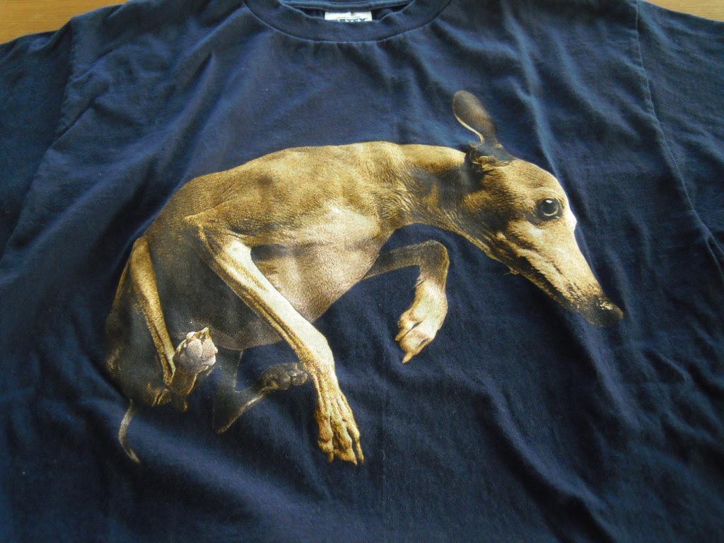 MR BIG ポールギルバート PAUL GILBERT FLYING DOG フライングドック TOUR 1999 ツアーTシャツ L