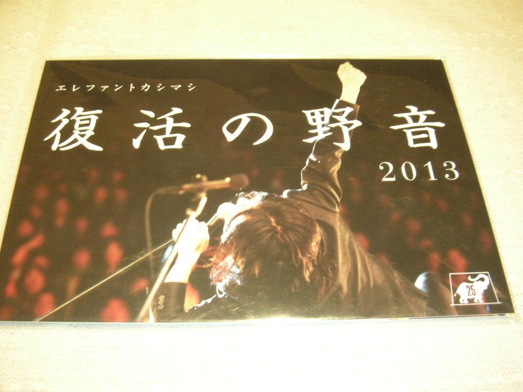 エレファントカシマシ 復活の野音 ポストカード 8枚組  ライブグッズの画像
