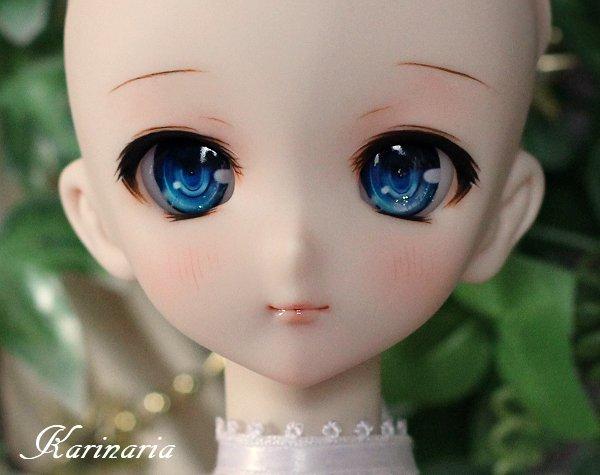 ◆Karinaria◆DDH-10カスタムヘッド+アイ3組 SW肌_画像3