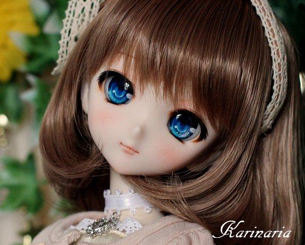 ◆Karinaria◆DDH-10カスタムヘッド+アイ3組 SW肌_画像2