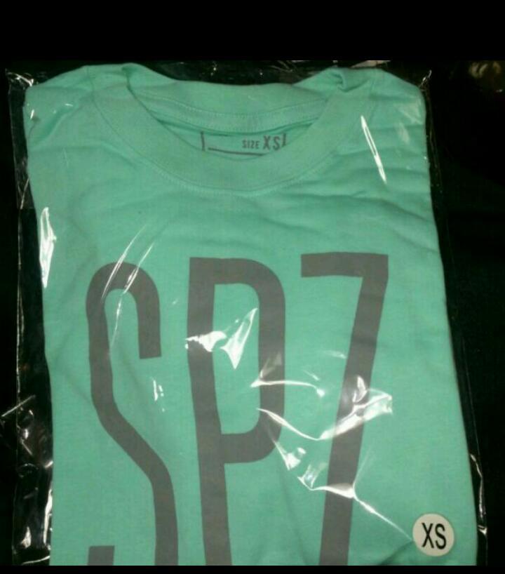 XSサイズ ミントグリーン 30/50オフィシャルTシャツ スピッツ