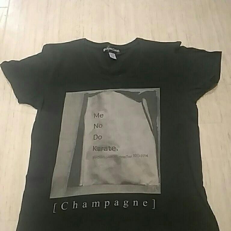 希少 [Alexandros] We Don't Learn Anything Tour 2013-2014 Tシャツ [Champagne] アレキサンドロス グッズ Sサイズ からてツアー c375